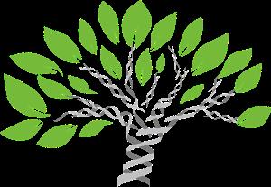 gene-tree-1490270_960_720